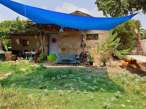 בית בכפר מוקף ירוק