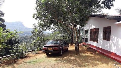 Nature Friendly Holiday Villa