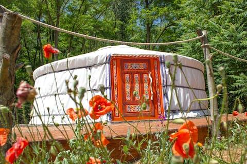 Funky Yurt at the Artfarm Tanya 162