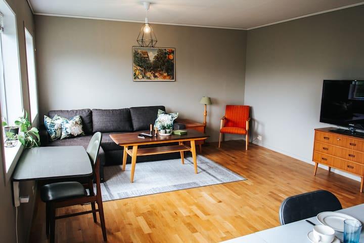 Stue med sovesofa, arbeidsplass og TV. Chromecast og AppleTV er installert.