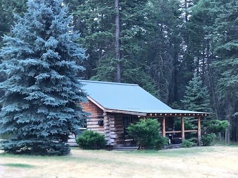 Bigfork Stage Cabin 3