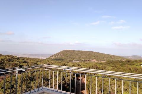 View of nature studio
