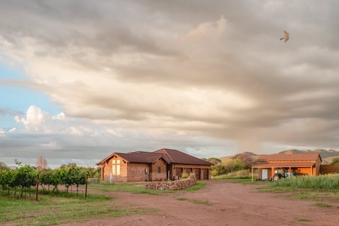 Vineyard refuge in the heart of Cochise County.