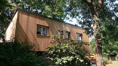 La Cabane 2 des Charmilles