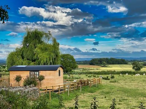 The Delightful Kaulquappe Shepherds Hut, Somerset