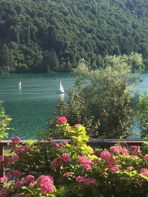 Casa a schiera fronte lago con giardino