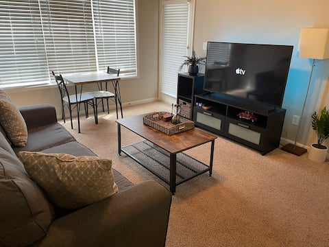 Cozy 1 BR Apartment