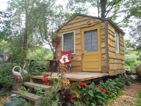 Cool Tiny House Beside Babbling Brook on 14 Acres