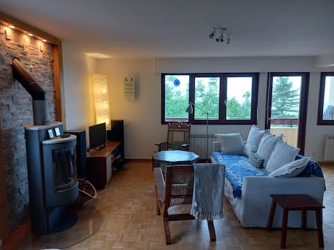 Lovely 2 bedroom apartment in Thoiry. Superb view