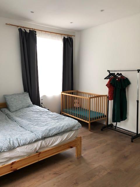Cosy 1-bedroom Jelgava city centre apartment