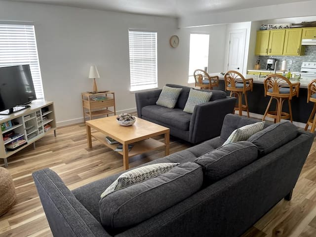 Open living room area with two couches (one is a double sleeper).