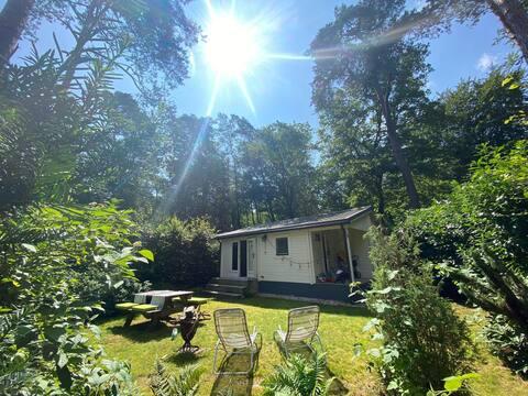 Casa Olivia, Tiny boshuis op de Veluwe