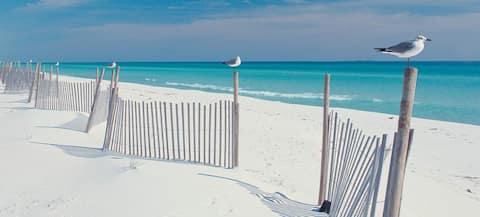 해변에서 가까운 멋진 동네에 있는 고급스러운 숙소!!