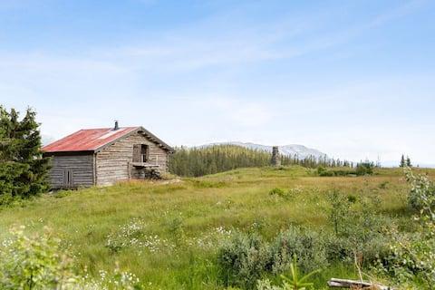 Remote mountain cabin hideaway