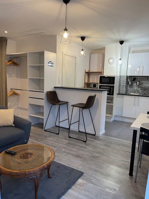 Épinal : superbe appartement en plein centre ville