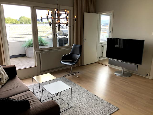 Living room; Sony Smart-TV with a Loewe home theater system.