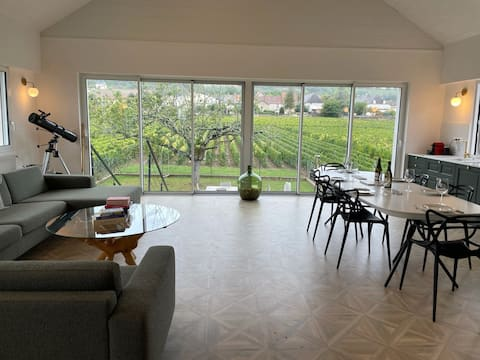 Les Places: Cozy home nestled in a 1er cru climat