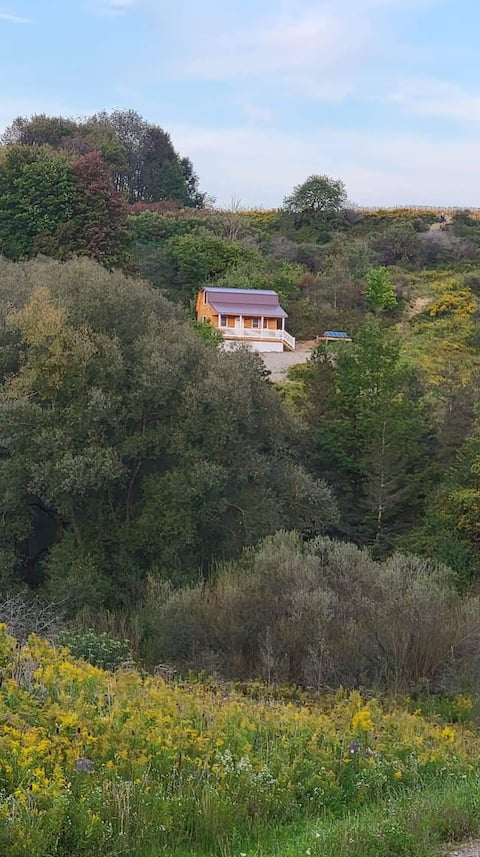 A tranquil cabin with a nice view on 90 acres