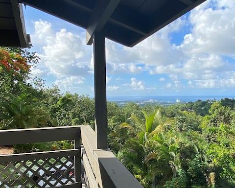 Relax in el Yunque Rainforest Luquillo Puerto Rico