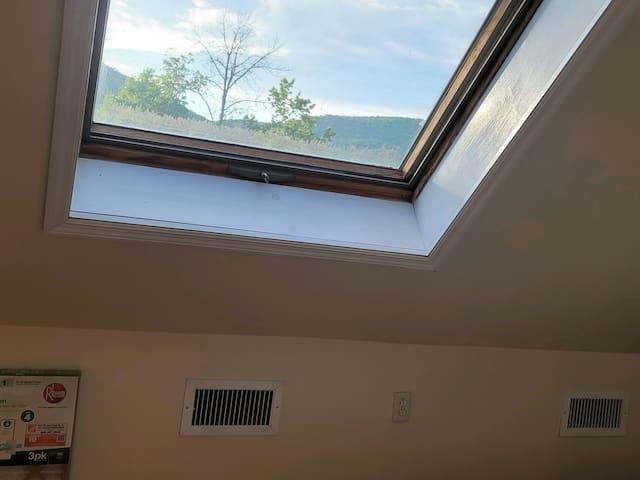 skylight - bedroom