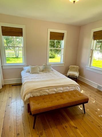 Sunny master downstairs bedroom