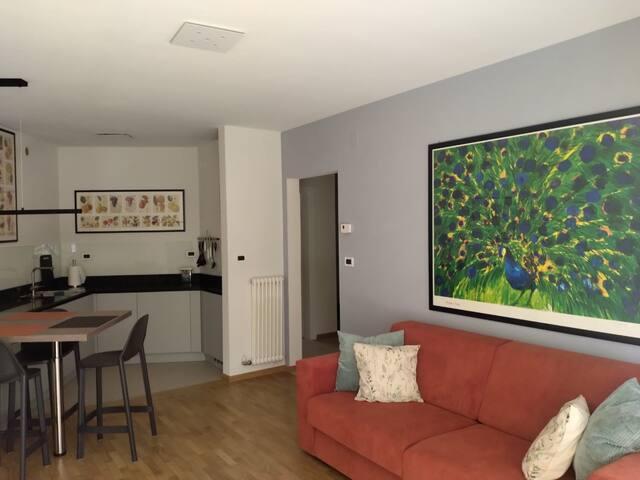Zona salotto con divano letto e televisione HD 55 pollici