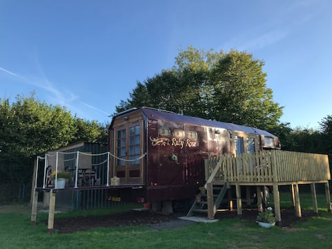 Secluded glamping horse lorry, off grid, sauna
