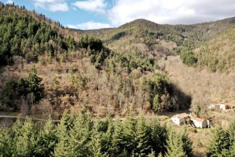 Gîte Le Riboulon :   Calme, nature et terroir