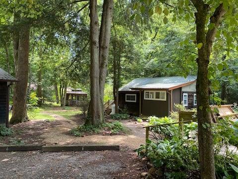 Stream-side Retreat Cabin Near Asheville