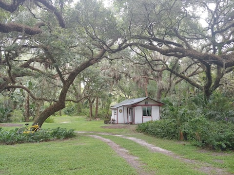 Peaceful, adorable, guest cottage on Apopka Canal.