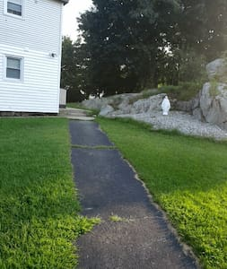 This walkway is fairly smooth should not be any trouble for someone with a wheelchair or walker.  However There is one step to go into the house. the entryway door is a slight step up off the ground