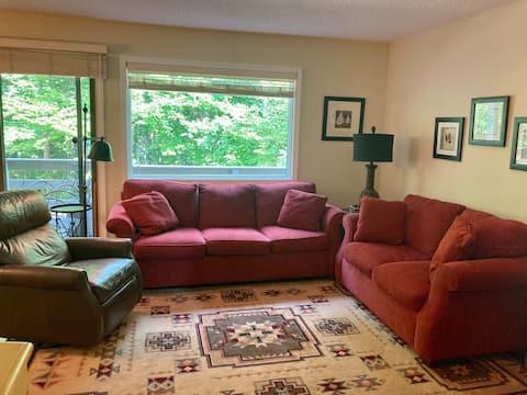 Quiet 2 bedroom condo , in idyllic northern MI