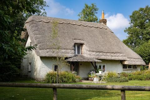 威爾特郡迷人的茅草小屋