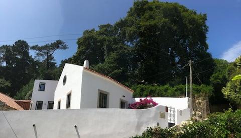 LusItália Eden-Casa, Serra e Mar Casota + Casinha