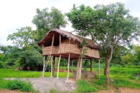 Nature Inspires (NICE) - Tree House Experience