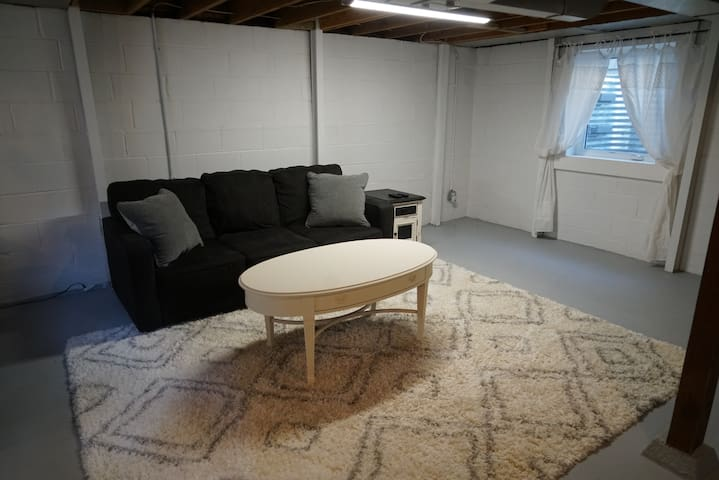 Basement Hide a bed couch
