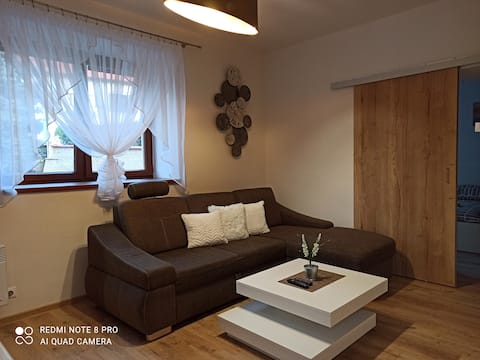 All you need in Decin I-5 bed apart-cykling trail