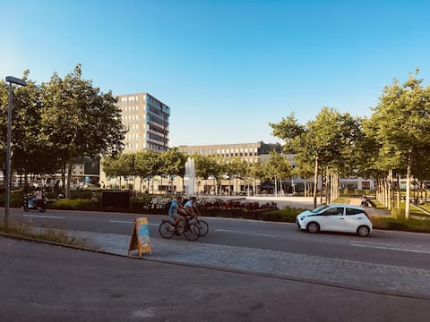 City Single + Business Appartement