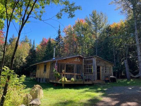 Adirondack Cabin in Serene, Secluded  Setting