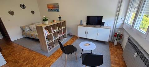 Studio Apartment Flora