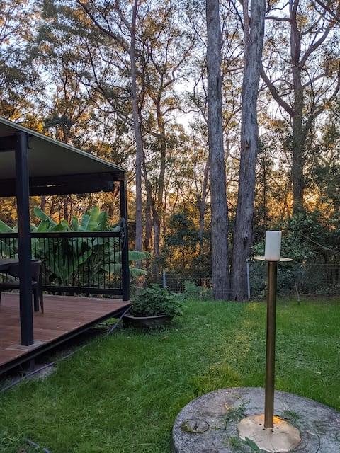 Springbrook Gold Coast Hinterland Hikers Cottage