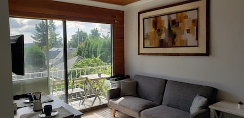 Sunny private 2 bedroom suite, walk to Skytrain