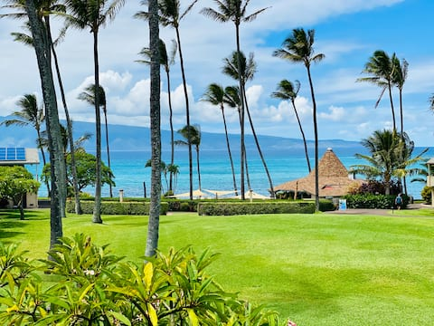 Ocean View Studio steps away from Napili Bay! w/AC