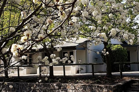 Cosy Cottage with a view, in the heart of Barossa!