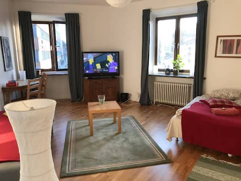 Very spacious 104m2 apartment in the city center