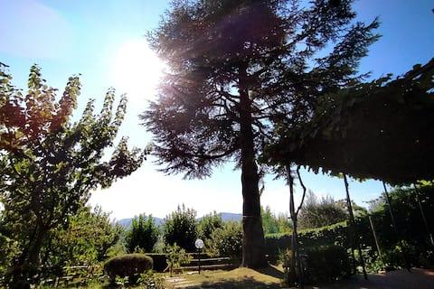 Natur und Kunst in den Hügeln von Florenz