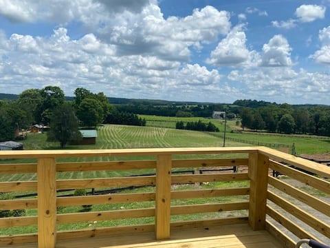 The Vineyard View