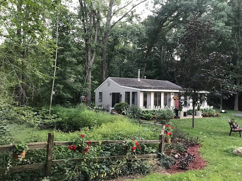 Lakefront cottage with pontoon boat included