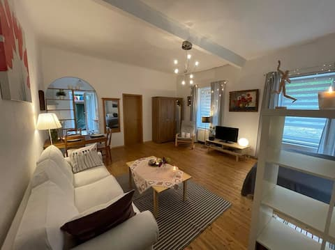 Apartment, close to Vienna in a wine district