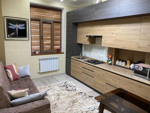 タシュケント中心部にある快適なアパートメント